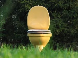 トイレの水が止まらない時、保険使える?