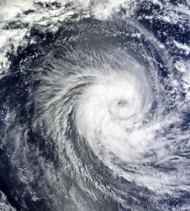 台風で被害にあったら、保険は使える?